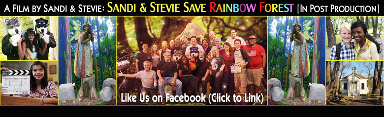 Sandi & Stevie Save Rainbow Forest